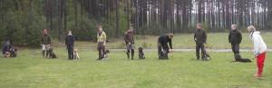 Westergrens hundförare skola!